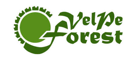 Velpe Forest